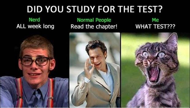 a how to study for the test