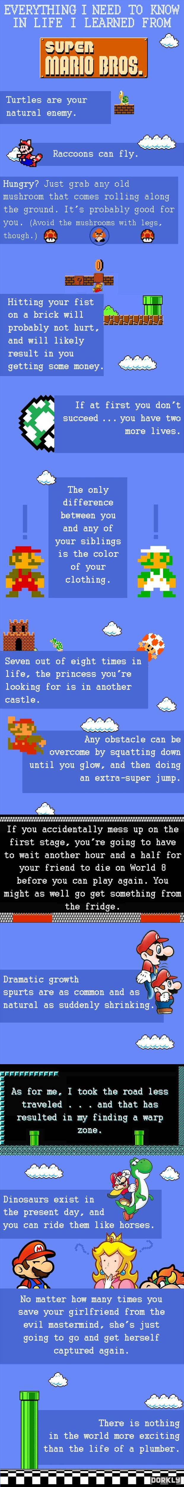 everything I need to know I learned from super mario brothers