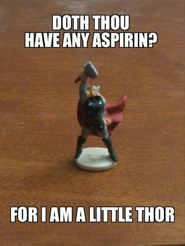 funny pictures thor
