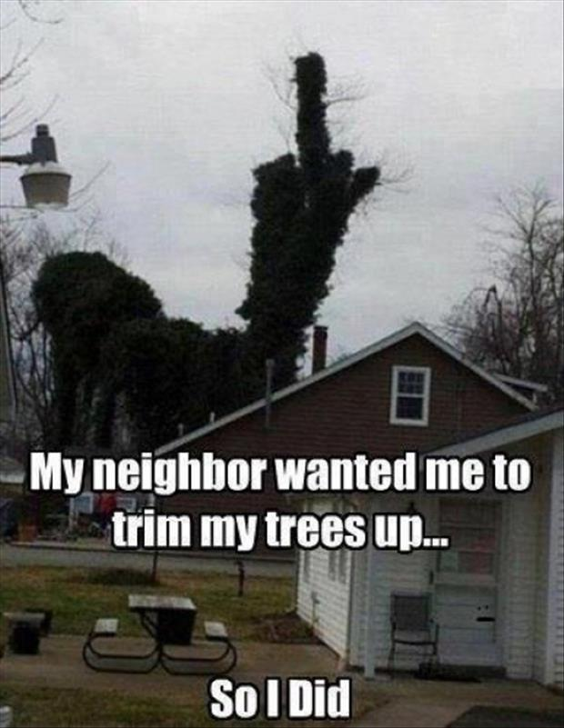 funny pictures trim your trees