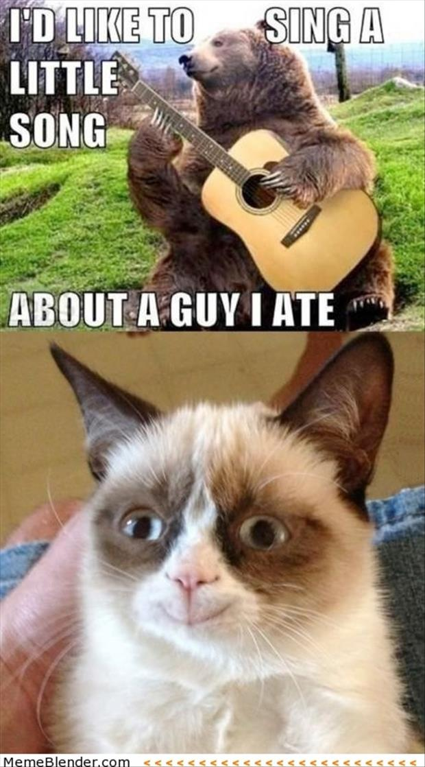 grumpy cat is happy