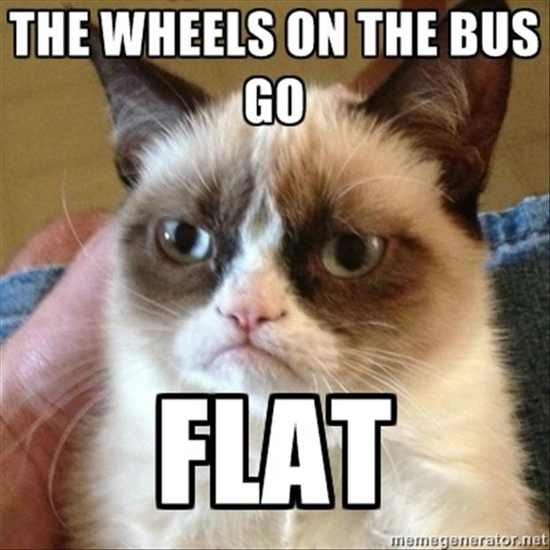 grumpy cat the wheels on the bus go flat