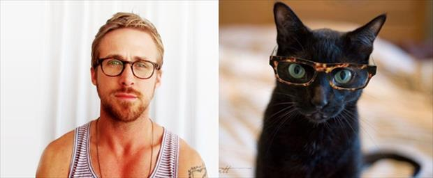 hot guys and cats (3)