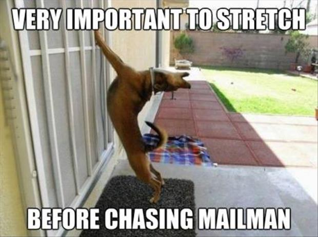 mailman being chased by dog stretching first