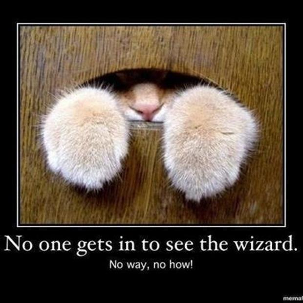 no one gets in to see the wizard