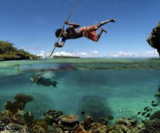 perfectly timed pictures fishing