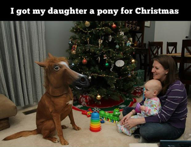 pony for christmas