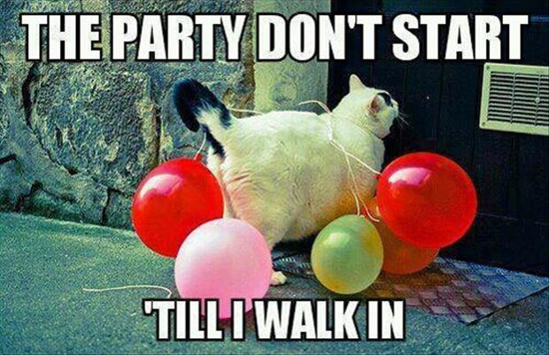the party don't start until I walk in