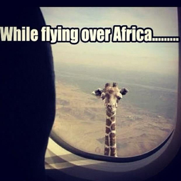 while flying over africa