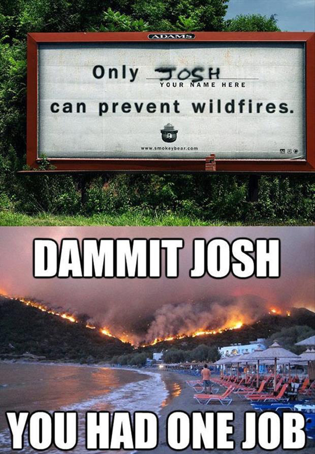 you had one job, forrest fires