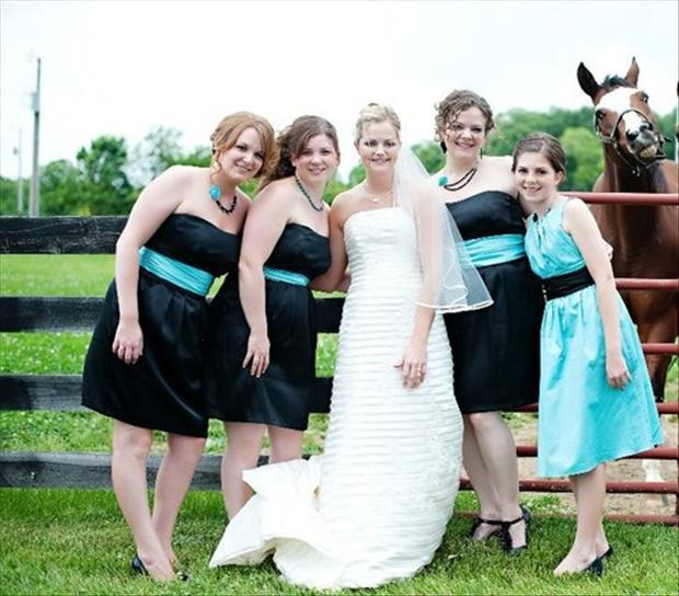 Funny Wedding Photobombs (1)