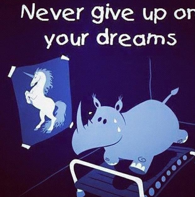 Funny fitness pictures- never give up