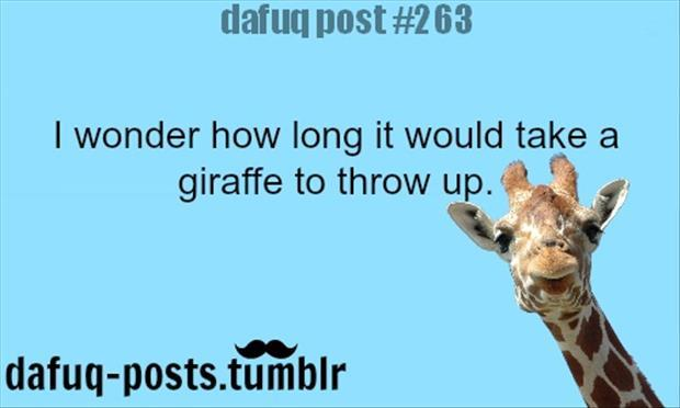 Funny giraffe jokes