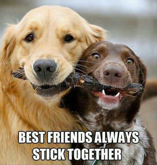 best friends stick together