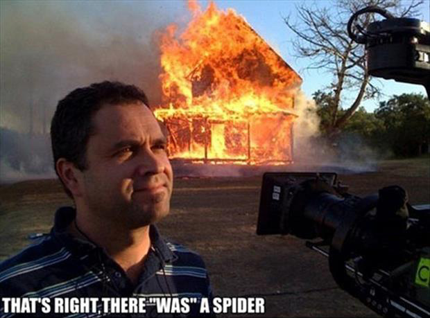 burn house down to kill a spider