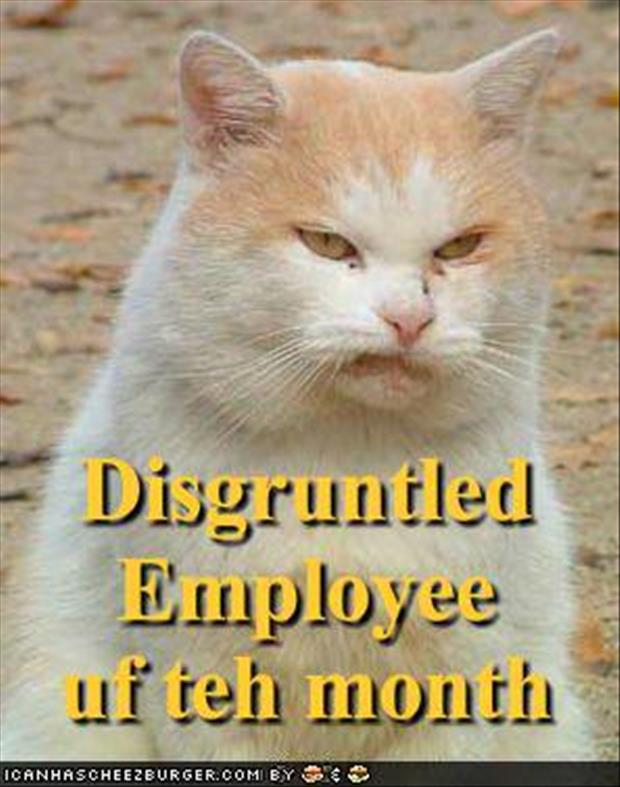 disgruntled employees funny pictures