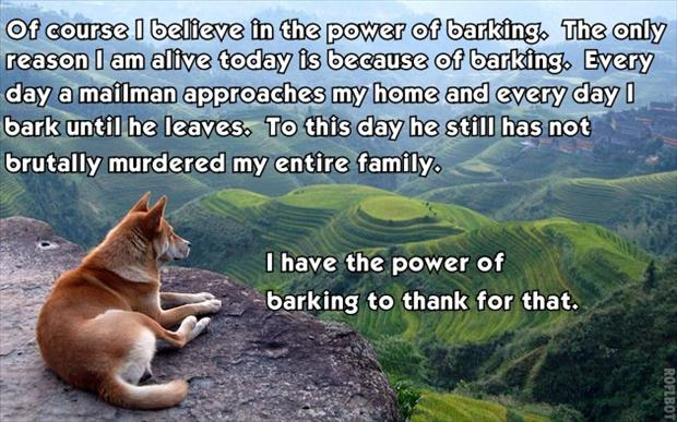 dog has the power of barking