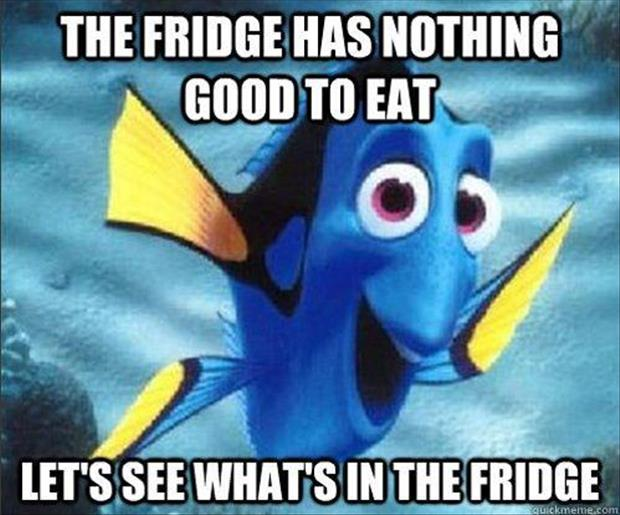 finding nemo funny pictures