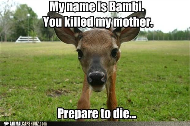 funny bambi pictures