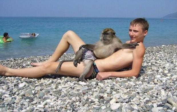 funny monkey and naked guy