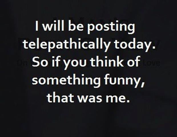 funny pictures dumpaday images (1580)