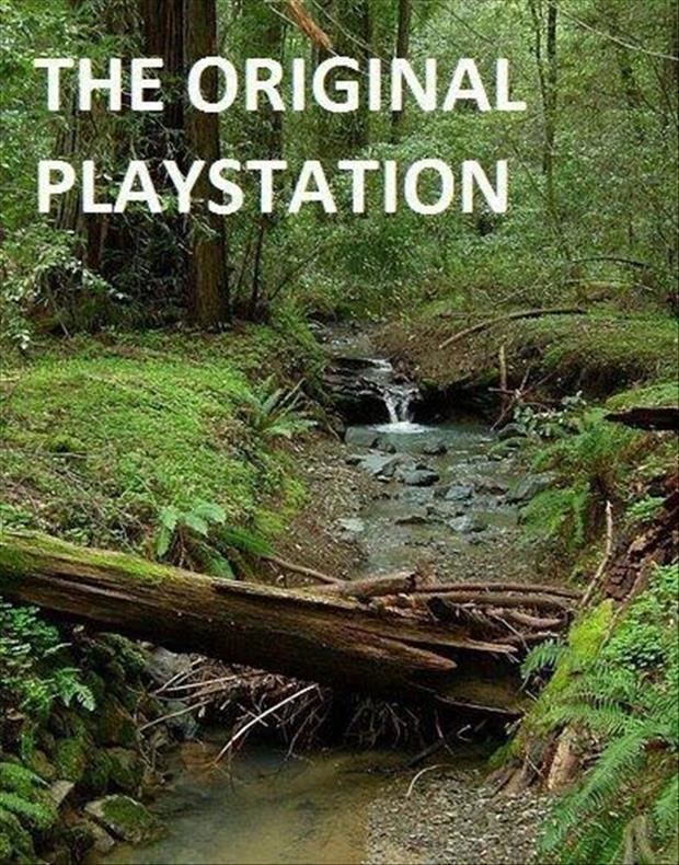 funny pictures playstation