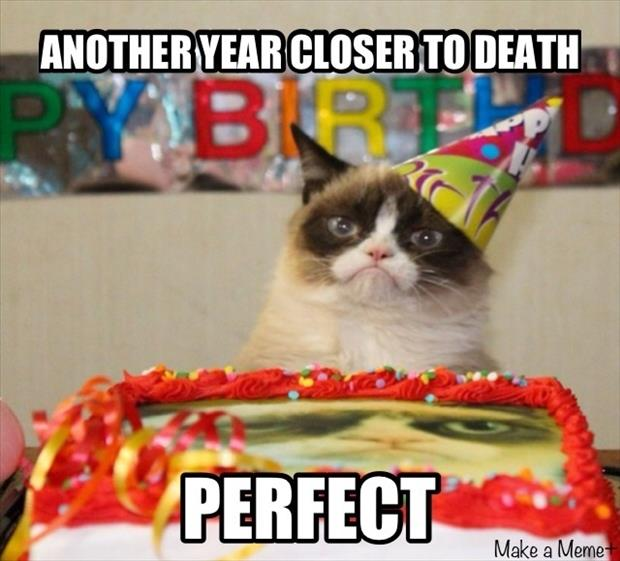 Birthday Meme Grumpy Cat Birthday Quotes Memes ...