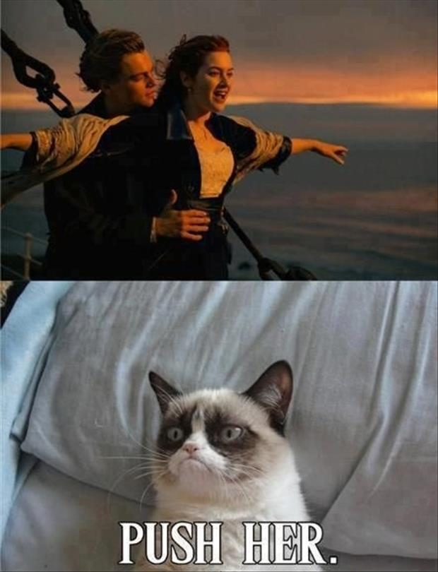 grumpy cat push her