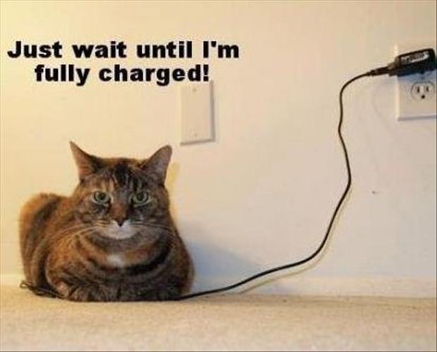 just wait until I'm fully charged