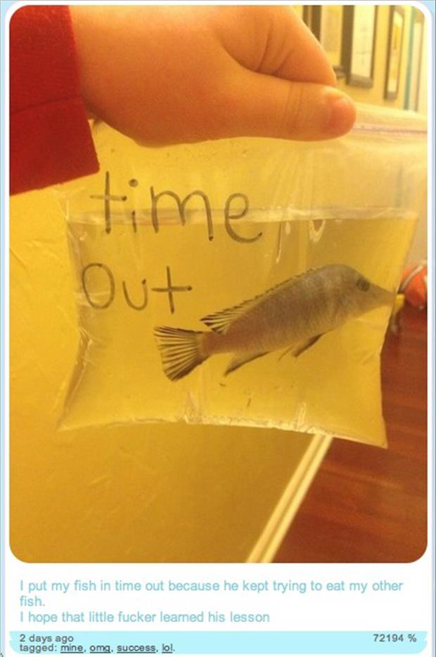 put my fish in time out