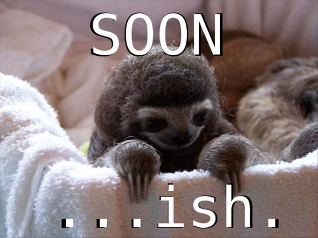 sloth soon meme