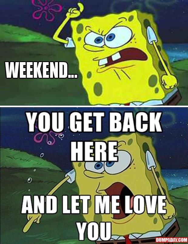 spongebob weekend funny pictures