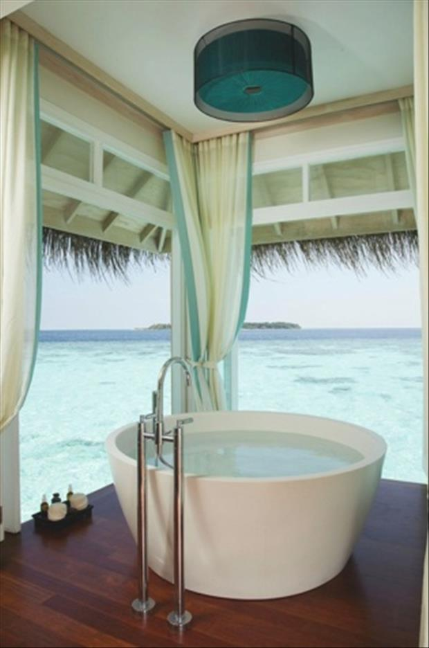 the amazing bathtubs (11)