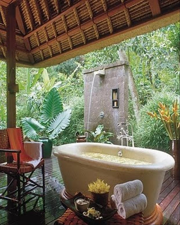 the amazing bathtubs (5)