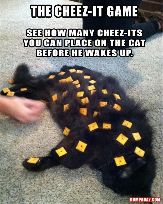 the cheeze it game