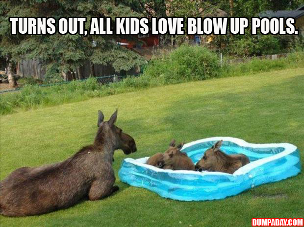 turns out all kis like swimming pools