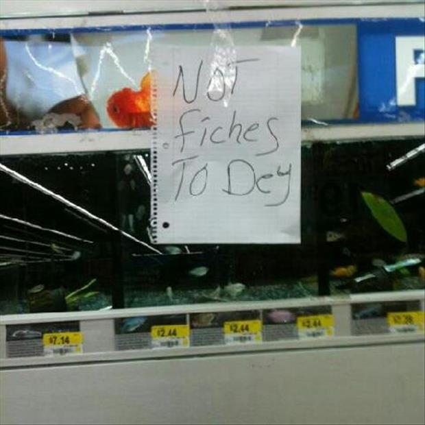 wtf wal mart pictures (2)