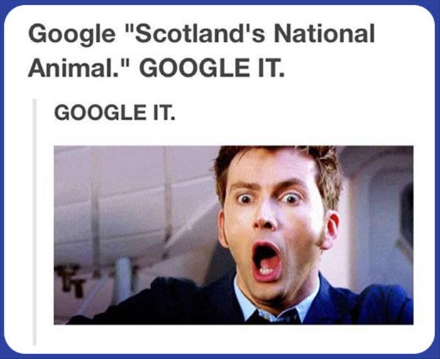 Scottland's national animal