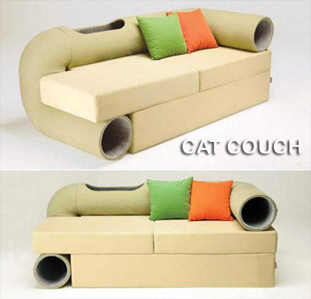 a couch for cat people