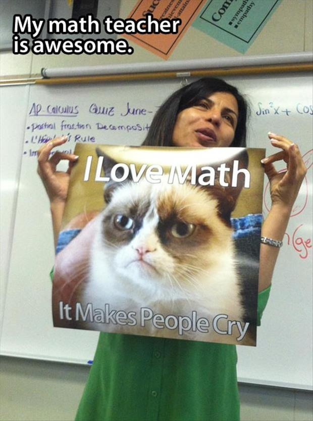 a grumpy cat loves math