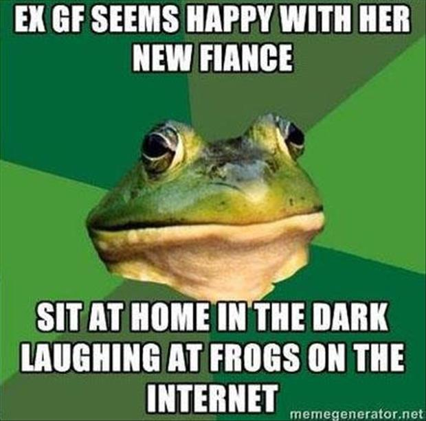 bachelor frog meme funny pictures, dumpaday (10)