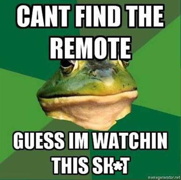 bachelor frog meme funny pictures, dumpaday (11)