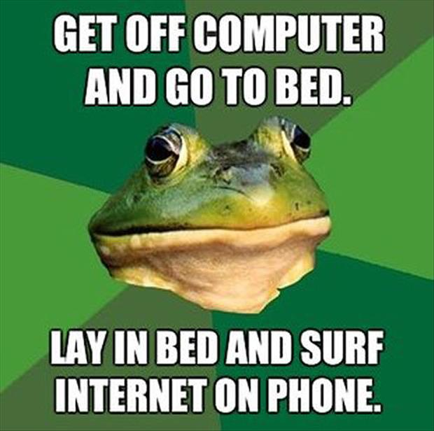 bachelor frog meme funny pictures, dumpaday (17)