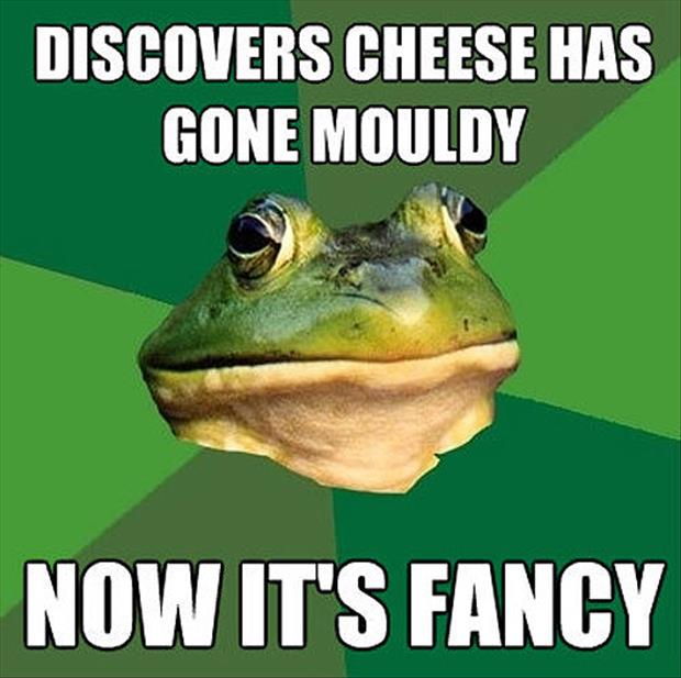 bachelor frog meme funny pictures, dumpaday (18)