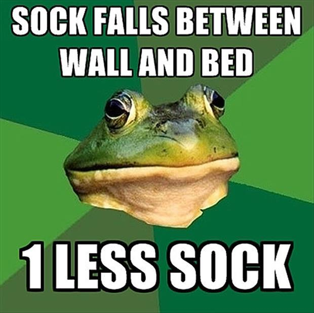 bachelor frog meme funny pictures, dumpaday (20)