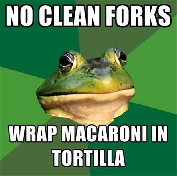 bachelor frog meme funny pictures, dumpaday (21)