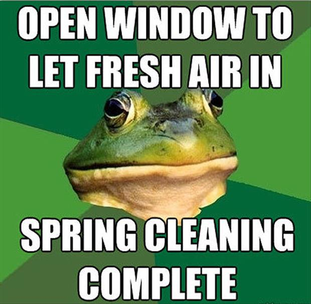bachelor frog meme funny pictures, dumpaday (22)