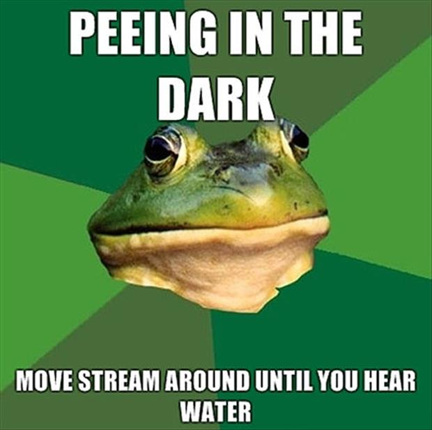 bachelor frog meme funny pictures, dumpaday (25)
