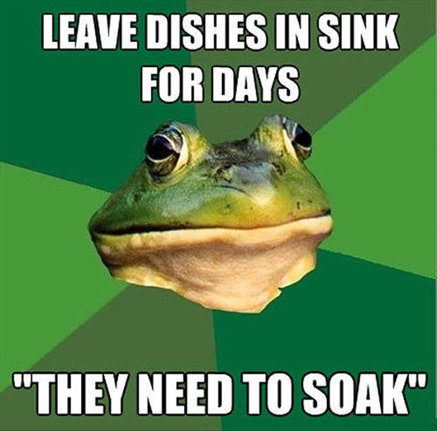 bachelor frog meme funny pictures, dumpaday (26)