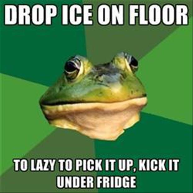 bachelor frog meme funny pictures, dumpaday (3)